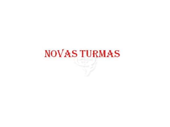 Turmas 2013